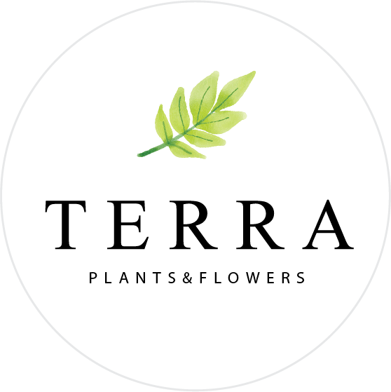 Terra Plants and Flowers logo - Business in Manotick